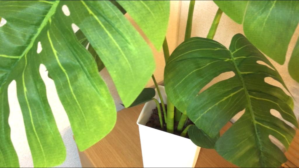 diy-monstera-leaf